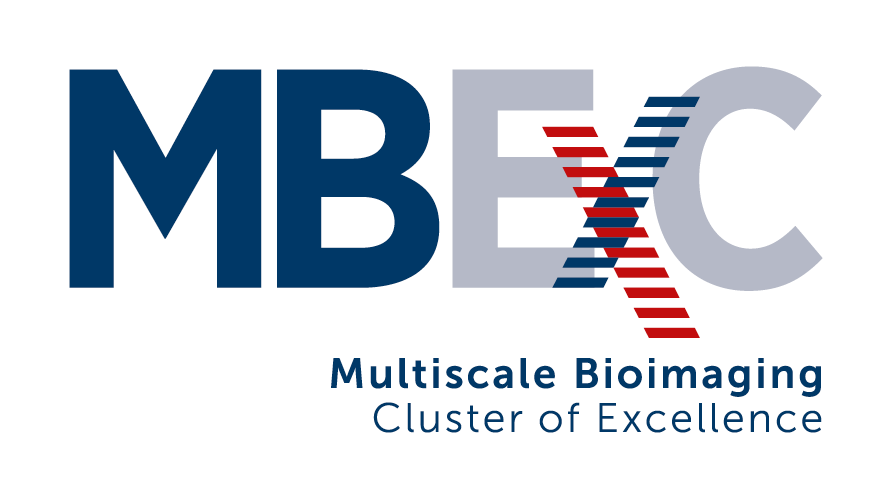 Multiscale Bioimaging Cluster of Excellence